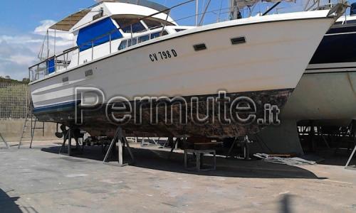 trawler semidislocante