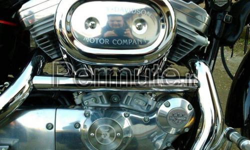Harley Davidson XLH 883 HUGGER carburatore